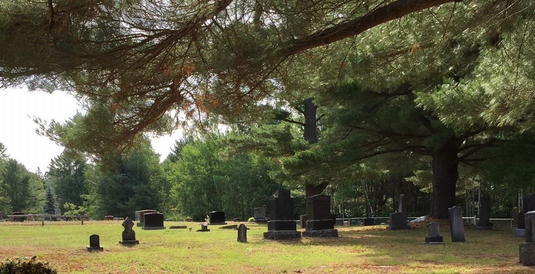 a view of the cemetery with pine branches above